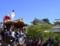 岸和田だんじり祭[祭][だんじり]岸和田城