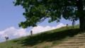 奈良:若草山 山上の展望台