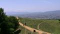 奈良:若草山 登山道から奈良市街を望む