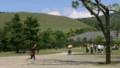 奈良:東大寺参道からみた若草山(左後方)