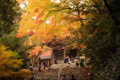 神護寺-楼門