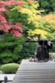 泉涌寺-御座所庭園