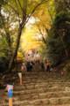 神護寺-楼門へ向かう長く急な坂の石段