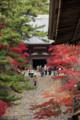 神護寺-毘沙門堂から金堂を望む