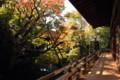 京都_永観堂