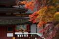 談山神社 左・十三重塔 右・権殿
