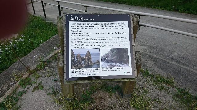 f:id:poroporo-namidako:20190605230631j:image