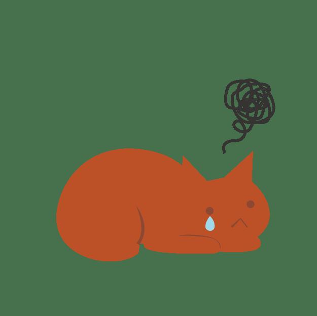 腎臓病早期発見のためのチェックリスト