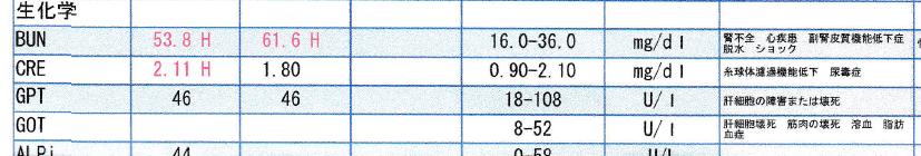2021年3月の血液検査の結果