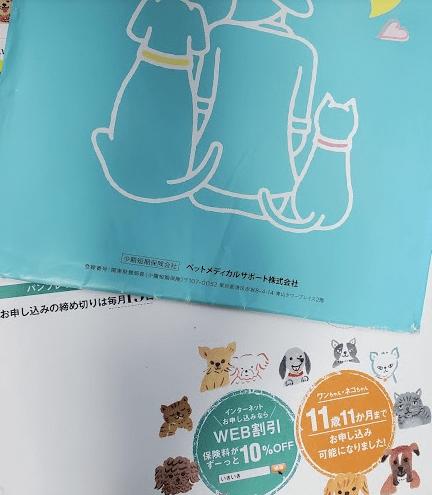 届いたパンフレットの一例