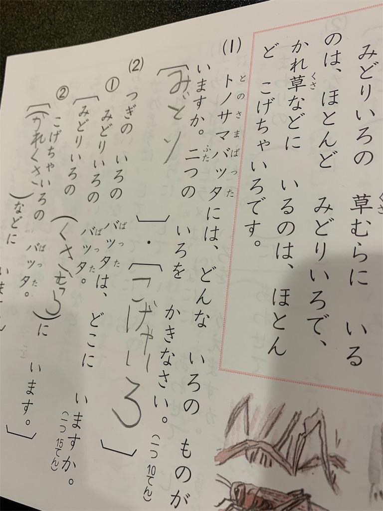 f:id:pot-san:20181029225904j:image