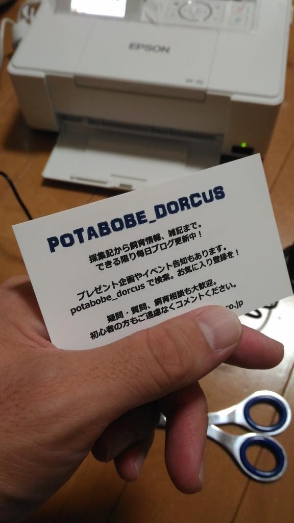 f:id:potabobe_dorcus:20181109223440j:plain