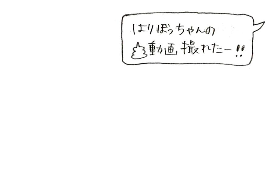 f:id:poteharibo:20170802170630j:plain