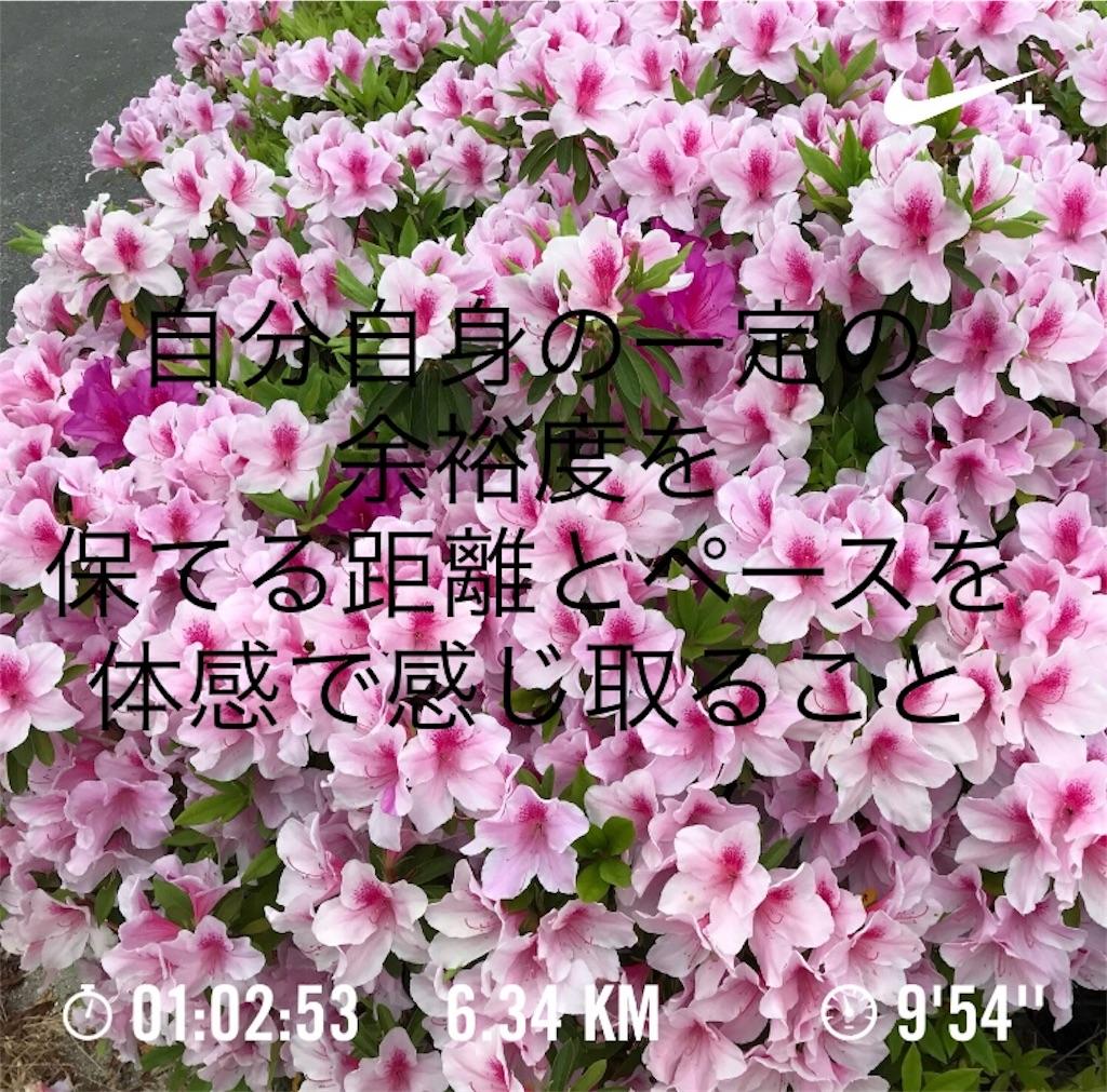 f:id:powerofrun:20180424174611j:image