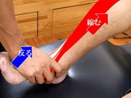 f:id:powerplate-tsukuba:20160827202101j:plain