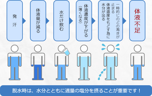 f:id:powerplate-tsukuba:20170530121449p:plain