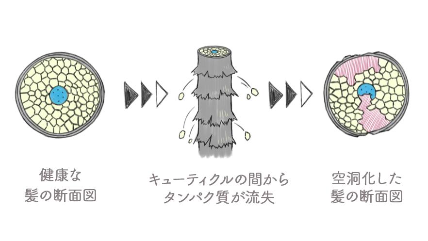 f:id:powl:20210104125505p:plain