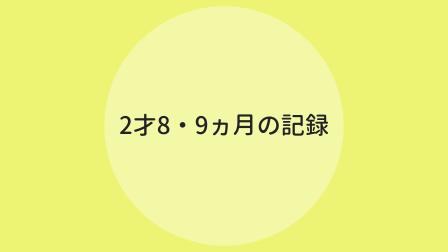 f:id:ppkmm:20200618004820p:plain