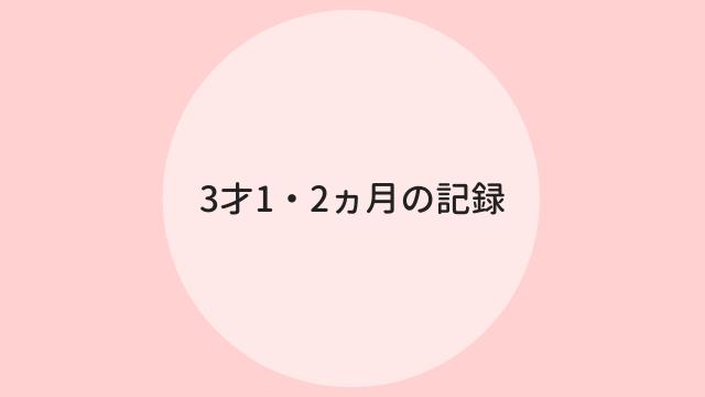 f:id:ppkmm:20201127004351p:plain