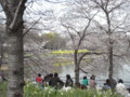 [090405長居植物園花見]