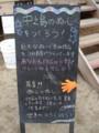 [091011水都大阪2009][アーチャンアート]