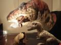 [120311恐竜の成長展]