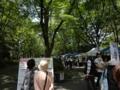 [130518うつぼ公園バラ祭][アーチャンアート][植物]