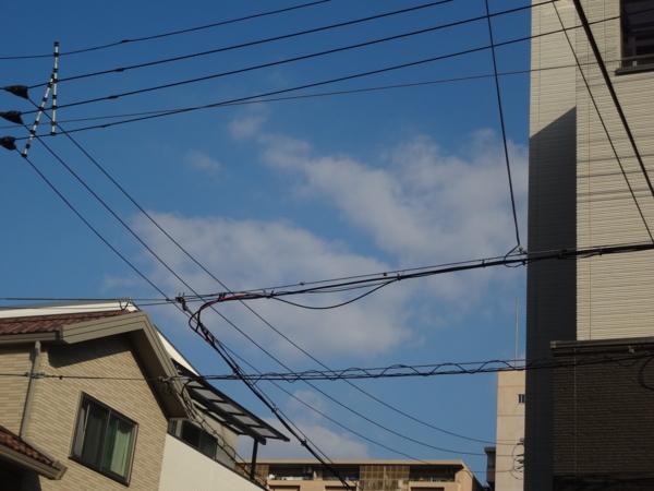 [131105いろんな雲]