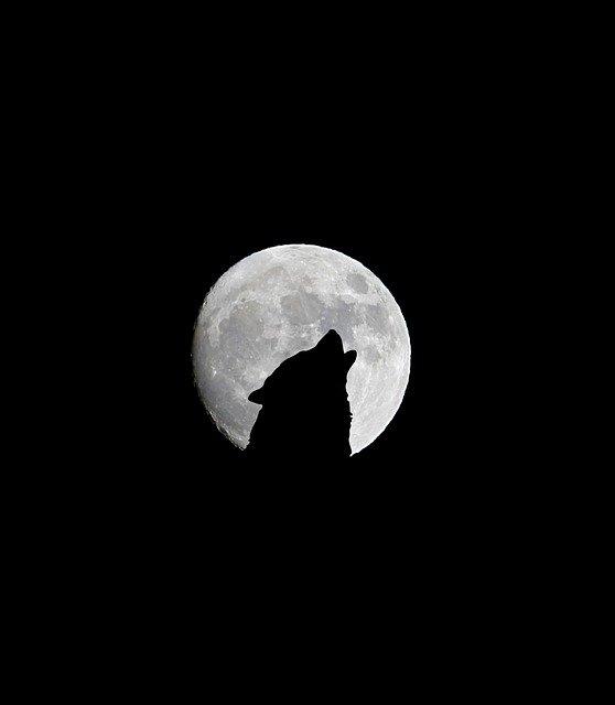 【人狼】人数と役職の振り分け方