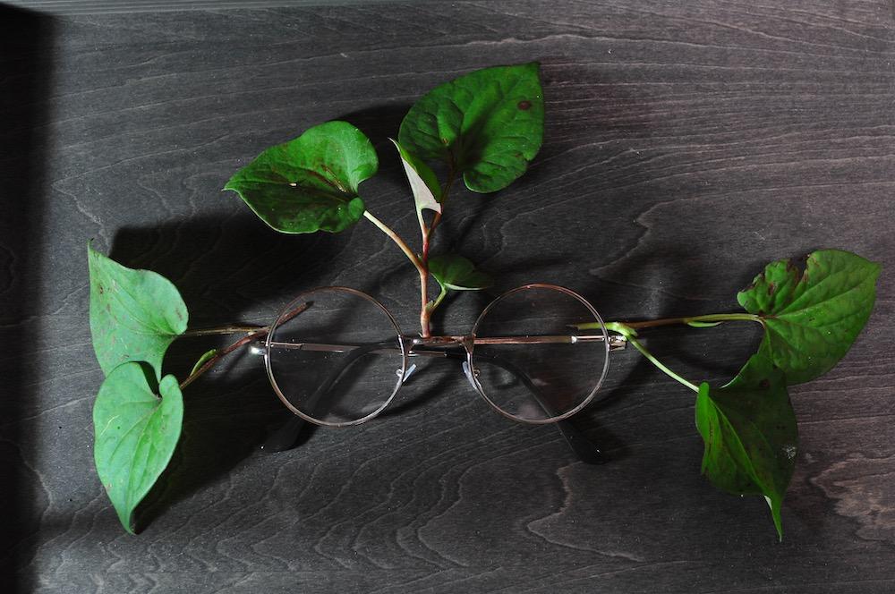 f:id:presbyopia:20190718212122j:plain