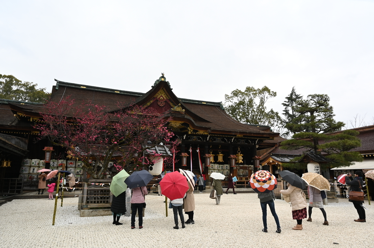 f:id:president-of-kyoto:20190426104737j:plain