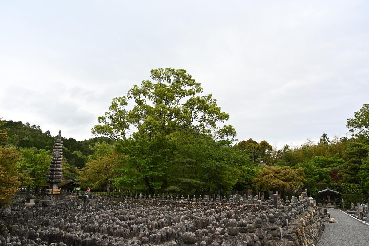 f:id:president-of-kyoto:20190427221125j:plain