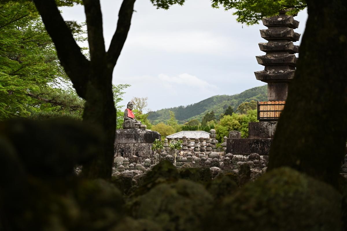 f:id:president-of-kyoto:20190427221858j:plain