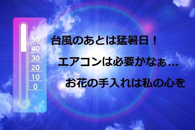 空と温度計の写真