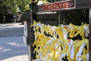 真清田神社のおみくじ