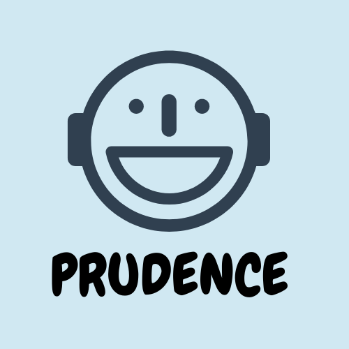 f:id:prudence-life:20201216152702p:plain