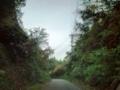 田舎道を走る
