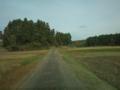 のどかな田舎道