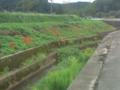 1.10.2012 石川r116 #2