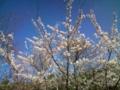 18.4.2012 ななかリサイクルセンター #5