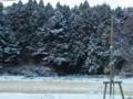 26.12.2012 雪化粧