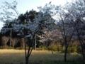 13.4.2013 七尾市中島町長浦 #3