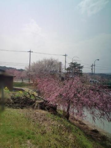 18.4.2013 七尾市満仁町 #2