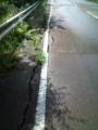 24.9.2012 お散歩 #8