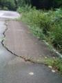 24.9.2012 お散歩 #9