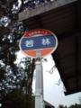 石川r244 若林バス停