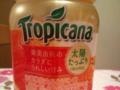 トロピカーナ・太陽たっぷり100 オレンジ #2