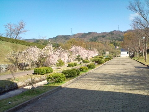 25.4.2013 七尾市希望の丘公園 #2