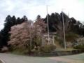 12.4.2016 赤倉神社 #1