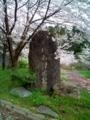 12.4.2016 赤倉神社 #4